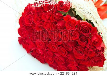 Large bouquet of fifty red roses in a gift wrapper on a white background
