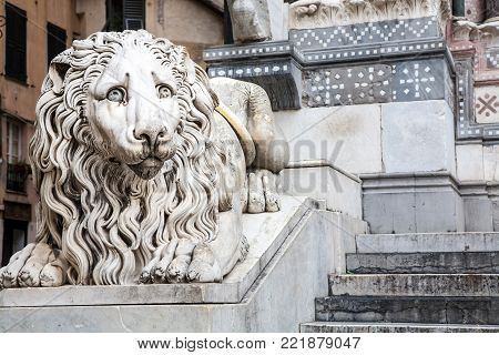 A medieval lion sculpture at the entrance to the 12th century Saint Lawrence cathedral of the Italian city of Genova or Genoa in the Liguria region