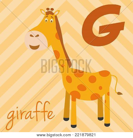 Cute cartoon zoo illustrated alphabet with funny animals: G for Giraffe. English alphabet. Learn to read. Isolated Vector illustration.