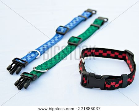 Pet supplies about collars for dog or cat isolated on white background