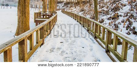 Wooden walkway covered with snow  public park. Park bench on walkway lined with trees on a snowy morning.
