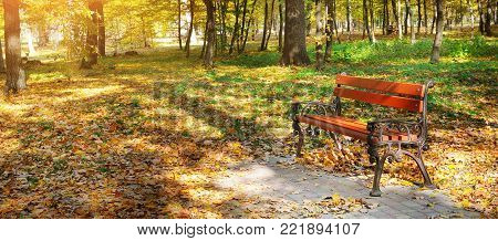Beautiful autumn park with paths and benches. Bright yellow leaves and a bench illumination by solar beams. Wide photo.