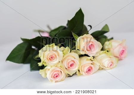Romantic blooming tender roses. Bouquet for beloved only. Concept for all festive events, especially for the wedding, birthday, Valentine's Day