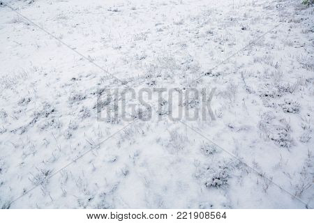 Frosty texture. Winter background.  Frosty texture. Sweden