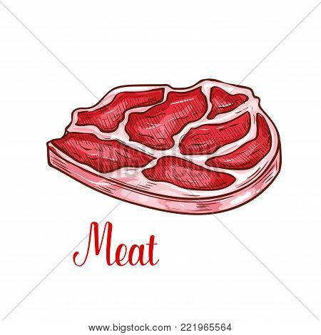Fresh meat or beef steak sketch icon. Vector isolated ham or bacon slice of farm fresh T-bone beefsteak or pork tenderloin brisket meat for butcher shop or gastronomy store and meaty products market