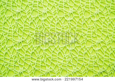 Background green delicate lace. Gentle texture fabric close. Cloth weave decorative. Textile weave patterned.