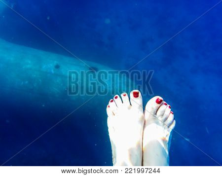 Fuselage of the aircraft in blue water at the depth of and the female foot