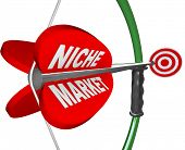 A bow and arrow with the words Niche Market and aiming at a red bulls-eye target, illustrating the pintpoint precision and focus needed to hone in on a specific market or audience poster