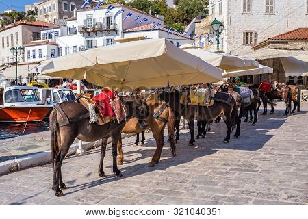 Hydra, Greece - 16 August 2019: Taxi, Donkeys The Means Of Transport At Hydra Island Saronic Gulf Gr