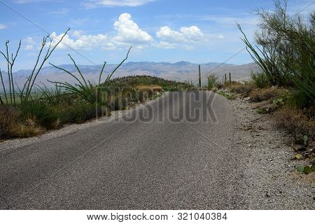 Road Through Rincon Mountains In The Sonora Desert In Central Arizona Usa