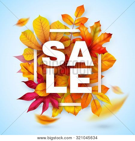 Autumn Sale. Seasonal Fall Promotion Design With Red And Yellow Realistic Leaves. Thanksgiving Octob