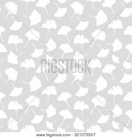 Ginkgo Biloba Plant Seamless Pattern, Large White Leaves Silhouettes On Grey Background. Vector Mono