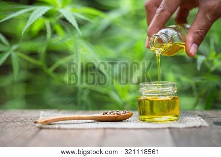 Pouring Hemp Oil Into Glass Jar And Hemp Seeds In A Wooden Spoon On A Green Hemp Leaf Background, Cb