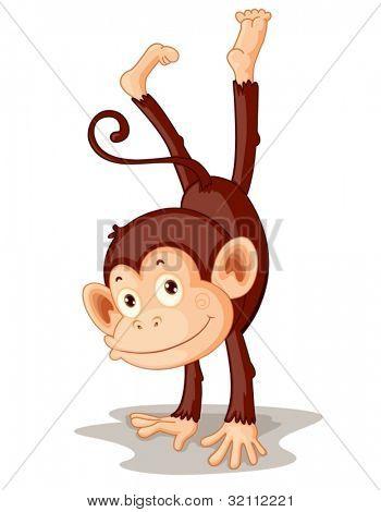 Illustration of a monkey on white
