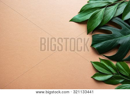 Tropical  Leaves And Monstera Leaf On Light Brown Background. Flat Lay, Top View, Copy Space. Creati