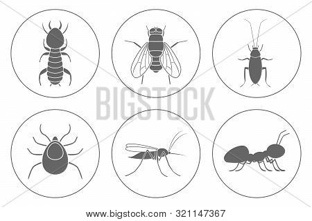 Household Pests Icon Set. Cockroach, Termite, Mosquito, Fly, Ant And Tick. Vector.