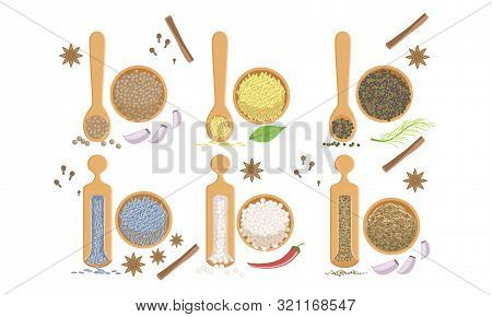Spices In Wooden Bowl Set, Peppercorns, Sesame, Fennel Seeds, Himalaya Salt Vector Illustration