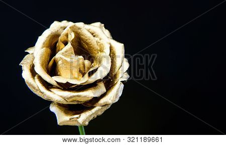 Floristics Business. Vintage And Jewelry. Wealth And Richness. Natural Beauty. Gold Rose. Luxury And