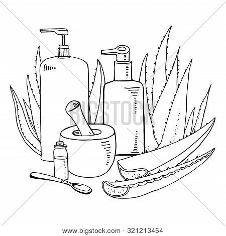 Composition With Aloe Plants, Ponder, Pestle And Cosmetic Tubes. Vector Hand Drawn Outline Sketch Il