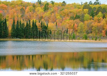 Peak Autumn Foliage Colors Reflected On Pristine Lake Josephine In Scenic Itasca State Park, Norther