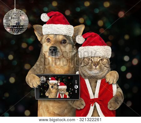 The Dog With A Smartphone And The Cat In A Santa Claus Outfit Made Selfie Together At The New Year P