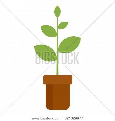 Plant Pot Icon. Flat Illustration Of Plant Pot Vector Icon For Web Design