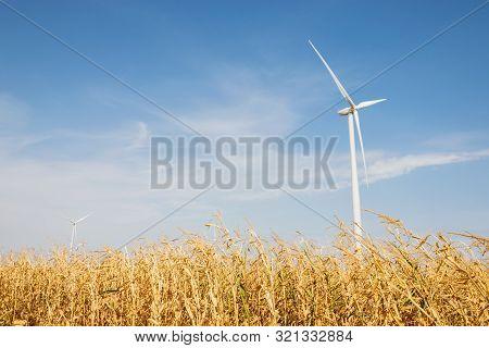 Windmill Agricultural Landscape Background. Close Up Of Windmill In Corn Field Background. Corn Fiel