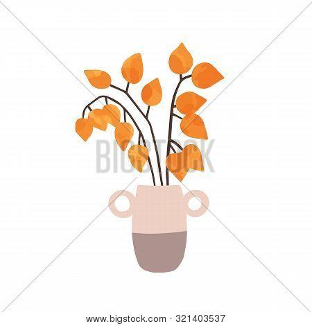 Physalis In Vase Hand Drawn Vector Illustration. Ripe Physalis Peruviana Isolated On White Backgroun