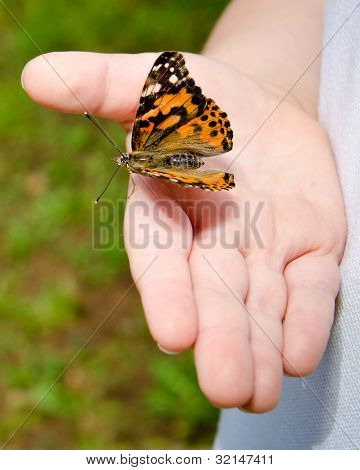 Spring concept with close up of child holding a painted lady butterfly