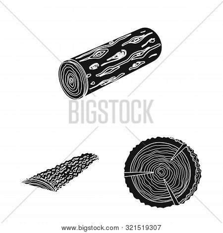 Vector Design Of Hardwood And Construction Icon. Set Of Hardwood And Wood Vector Icon For Stock.