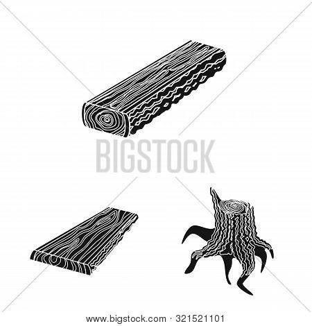 Vector Design Of Hardwood And Construction Icon. Collection Of Hardwood And Wood Stock Symbol For We