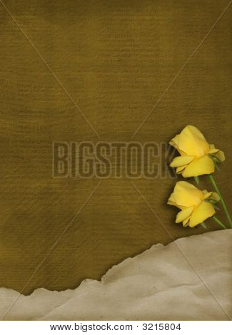 Grunge Card With  Yellow Roses For Day  Mother'S Or Father'S