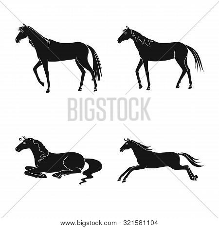 Vector Illustration Of Fauna And Mare Logo. Collection Of Fauna And Stallion Stock Vector Illustrati