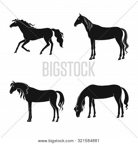 Vector Design Of Fauna And Mare Sign. Set Of Fauna And Stallion Stock Vector Illustration.