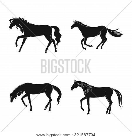 Vector Illustration Of Fauna And Mare Logo. Set Of Fauna And Stallion Vector Icon For Stock.