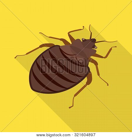 Isolated Object Of Beetle And Black Logo. Collection Of Beetle And Arthropod Stock Vector Illustrati