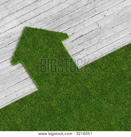 Eco Green House Vs Concrete Traditional Construcion, Metaphor Image