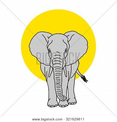 Coloring Book For Kids And Adults Decorative Cartoon Elephant. Vector Cute Baby Elephant, Black Silh