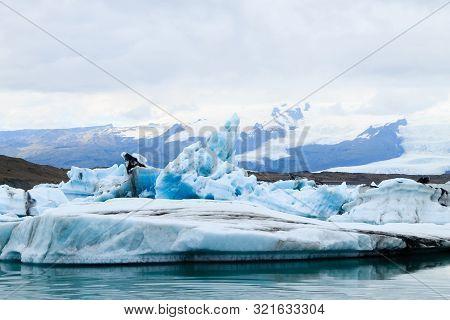 Icebergs On Water, Jokulsarlon Glacial Lake, Iceland