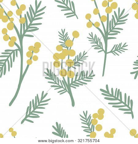 Mimosa Seamless Pattern. Floral Simple Spring Or Summer Graphic Design For Paper, Textile Print, Pag