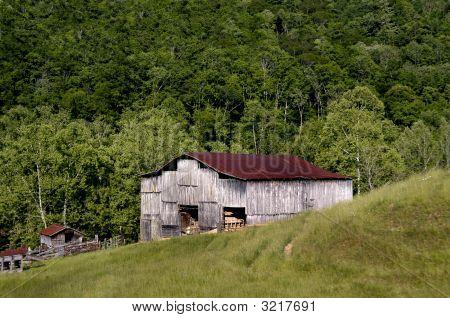 Backwoods Farmland
