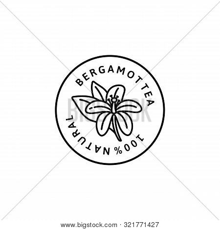 Bergamot Flower Tea Icon In Trendy Linear Style. Vector Organic Bergamot Badges Of Packaging Design