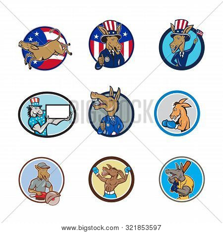 Set Or Collection Of Cartoon Character Mascot Style Illustration Of A Donkey, Mule, Horse, Or Jackas