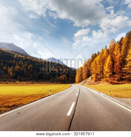 Amazing view of alpine road, orange larch forest and high mountains on background. Switzerland, near Italy border. Landscape photography