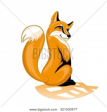 Sly Orange Fox On A White Background.
