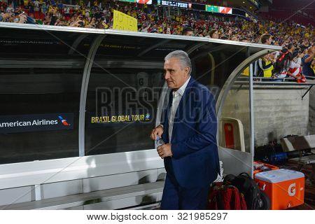 Brazilian National Soccer Team Coach Tite