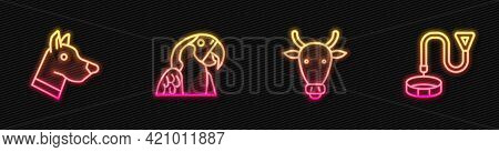 Set Line Cow Head, Dog, Macaw Parrot And Collar With Name Tag. Glowing Neon Icon. Vector