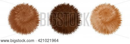 Fur Pompoms. Brown And Beige Fluffy Furry Balls, Set Of Realistic 3d Objects Isolated On White Backg