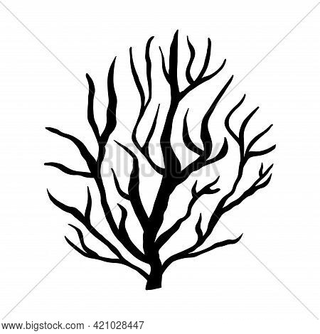 Branched Tree. Black And White Vector Isolated Doodle Illustration. Silhouette Of A Bush With Crooke
