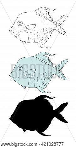 Vector Set Of Ocean Fish Selene. Hand-drawn Selene Sea Fish In Sketch Style Black Outline And Silhou